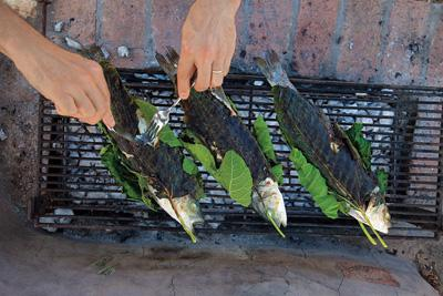 Seabass fish and ways of its preparation