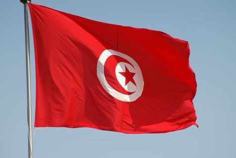The flag of Tunisia: appearance and history
